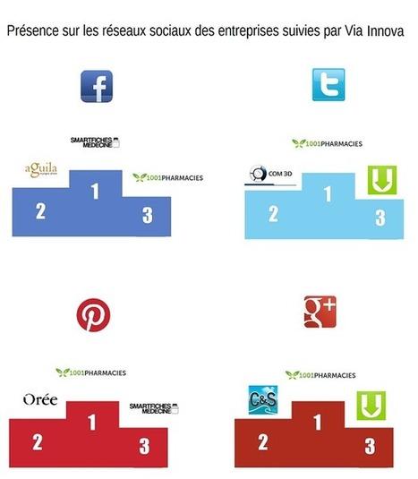 Actualités - Classement sur les réseaux sociaux des entreprises de la pépinière - Via Innova | conseils web | Scoop.it