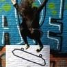 Skateboardat8