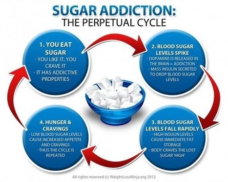 Why Do We Crave Sugar? | Understanding Addiction | Scoop.it