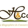 La Blogosphère du Commercial