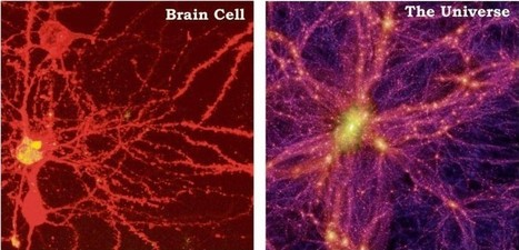 Physicists Find Evidence That The Universe Is A Giant Brain! | Energy Health | Scoop.it