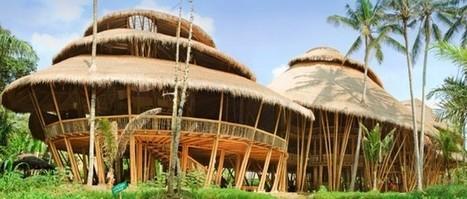 La Green School, une école de rêve à Bali   Nature et urbanisme   Scoop.it