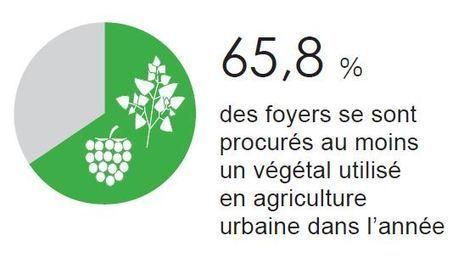 L'agriculture urbaine se développe chez les particuliers - Campagnesetenvironnement.fr | Agriculture urbaine et rooftop | Scoop.it