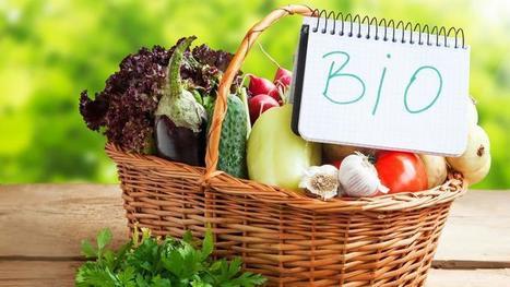 Le jardinage bio est-il meilleur pour la santé ?   Curiosités planétaires   Scoop.it