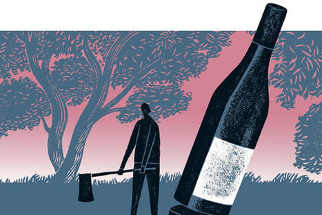 How important is soil when it comes to the nature and character of wine? | Vitabella Wine Daily Gossip | Scoop.it