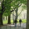 jardines historicos, restauracion, normativa