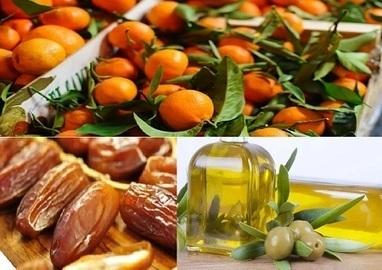 Tunisie : L'huile d'olive et les dattes aujourd'hui, demain les agrumes