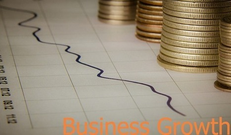 Readying Business for Growth - Recipes for Your Business Processes | Improving processes for small businesses | Scoop.it