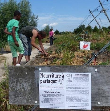 Comment les jardins étudiants fleurissent aux abords des résidences universitaires | (Culture)s (Urbaine)s | Scoop.it