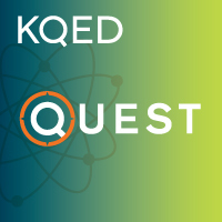 QUEST TV – Inventing the Future: Bikes, Bugs and Fashionistas | Food Science and Technology | Scoop.it