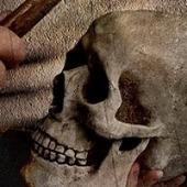 Hamlet victime du filtrage internet de la British Library : trop violent | Bibliothèque et Techno | Scoop.it