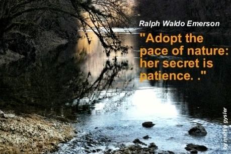 Leadership mantra:Patience. | PEOPLE BUILDING | Scoop.it