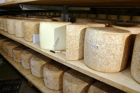 AOP Cantal : La qualité et l'excellence en ligne de mire de la nouvelle équipe du Cif | The Voice of Cheese | Scoop.it