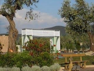 Grappolo Rosso: Breve racconto del Maremma Wine Shire | Wine in Tuscany | Scoop.it
