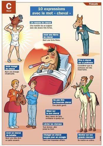 Expressions avec le mot cheval | Remue-méninges FLE | Scoop.it | Le Top du FLE | Scoop.it