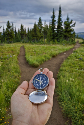 How To Make A Decision - 7 Steps for a Good Decision Making Process | Mediocre Me | Scoop.it