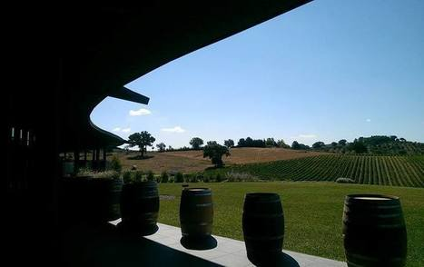 Frescobaldi, a culture beyond the vine and the grape   Wine website, Wine magazine...What's Hot Today on Wine Blogs?   Scoop.it