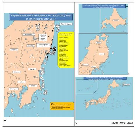 Fukushima Ocean Releases Study, Now In English | SimplyInfo | Mapping & participating: Fukushima radiation maps | Scoop.it