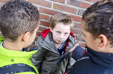 El acoso escolar se dispara: las aulas del miedo | La Mejor Educación Pública | Scoop.it