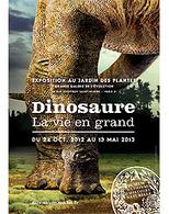 Museum national d'histoire naturelle - Dinosaure, la vie en grand - du 24 octobre au  2013   Les expositions   Scoop.it