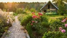 Top Tips for Converting Your Garden into an Eco-Friendly Paradise - Blue and Green Tomorrow | Gardening | Scoop.it
