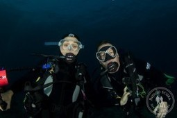 2014 Mozambique Dive Trip - Customer Review | Indigo Scuba | Indigo Scuba | Scoop.it