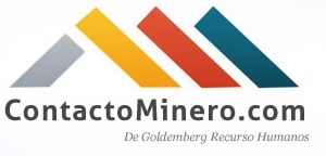 Mineras seleccionaron 150 pymes para sustituir importaciones | Sobre Minerales | Scoop.it