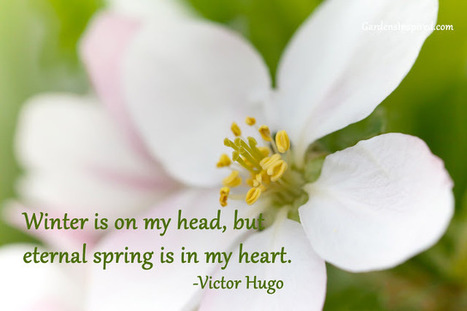 Quote by Victor Hugo | The Muse | Scoop.it