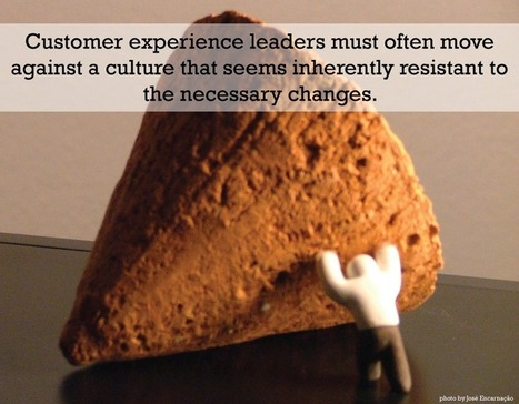 5 Traits of Successful Customer Experience Leaders | Customer Excellence At Work | Scoop.it