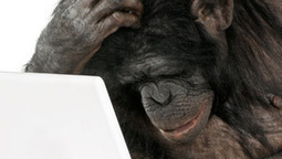 Why humans have computers, and chimps are stuck with sticks | Be Productive | Scoop.it