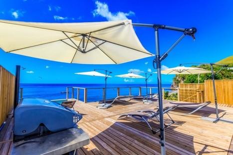 Recette de marinade pour barbecue, saveurs des îles.   Voyage Martinique   Scoop.it