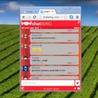 Website chat widget