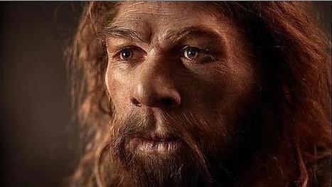 Los neandertales devoraban bebés y les sacaban la médula | Enseñar Geografía e Historia en Secundaria | Scoop.it