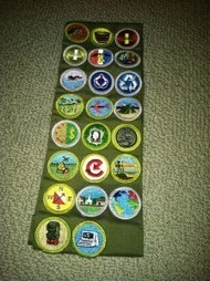 Badges: Alternative Credentialing for Lifelong Learning « The Saylor Foundation | A New Society, a new education! | Scoop.it