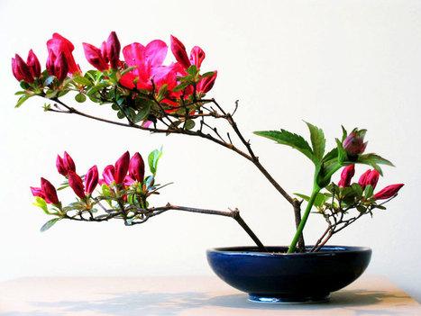 Ikebana Beautiful is born! • Ikebana Beautiful | TRENDBUBBLES | Scoop.it