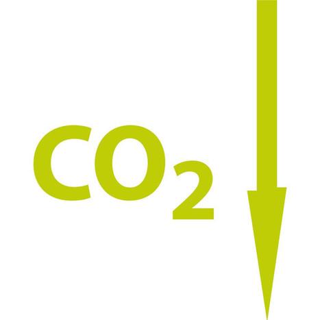 Cosa vuole dire compensare le emissioni di CO2? | Offset your carbon footprint | Scoop.it