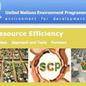 Corporate sustainability - strategies for business