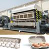 Beston Waste To Energy Plant