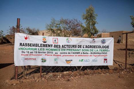 L'agroécologie essaime en Afrique de l'Ouest | Alternativas - Tecnologías - Reflexion - Opiniones - Economia | Scoop.it