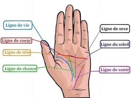 Qu'est ce que la chiromancie? Tout savoir sur les lignes de votre main | voyant marabout africain | Scoop.it