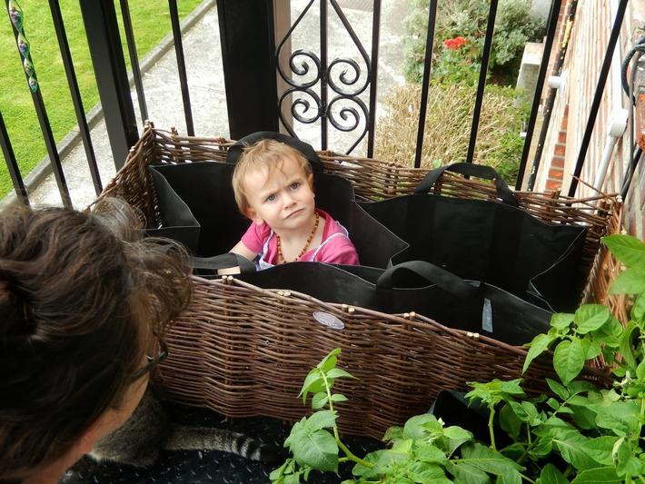 Balcony Gardening | Container Gardening | Scoop.it