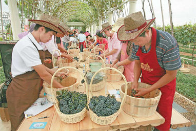 Chinese toast wine tourism | Tourism Today & Tomorrow | Scoop.it
