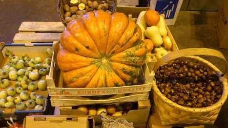 10 razones por las que consumir alimentos ecológicos | Seguridad Laboral  y Medioambiente Sustentables | Scoop.it