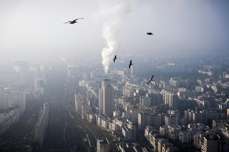 Pollution: gratuité du stationnement résidentiel samedi à Paris | Planete DDurable | Scoop.it