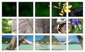 Come creare un banner per il profilo Google Plus | Informatica ... | About Google+ | Scoop.it