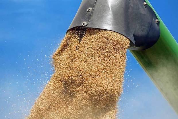 L'Algérie se positionne pour l'achat de 360 000 tonnes de blé tendre