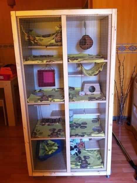 Ratty Cage | BricoService - Manutenzioni residenziali | Scoop.it