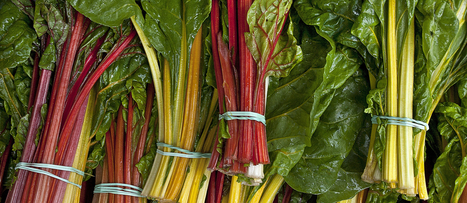 Can We Fight the Blues With Greens?   NutritionFacts.org   Plant Based Nutrition   Scoop.it