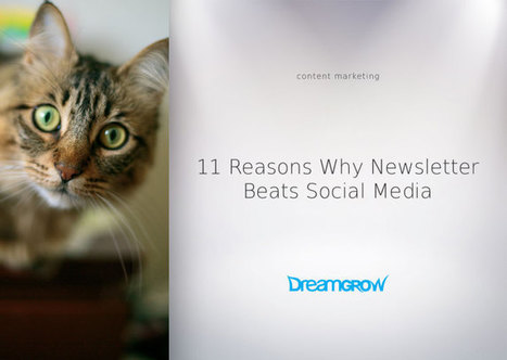 11 Reasons Why Newsletter Beats Social Media | Strengthening Brand America | Scoop.it