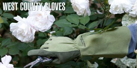West County Gardener - Garden gloves for every season | Anchors Sales Company - Portfolio | Scoop.it